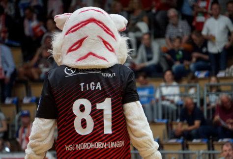 HSG Nordhorn-Lingen spielt um Einzug ins Achtelfinale des DHB-Pokals