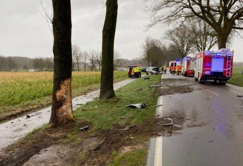PKW prallt gegen Baum: Mann bei Unfall in Vrees verletzt