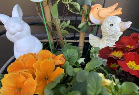 Unsere EVW-Kids über ein besonderes Osterfest