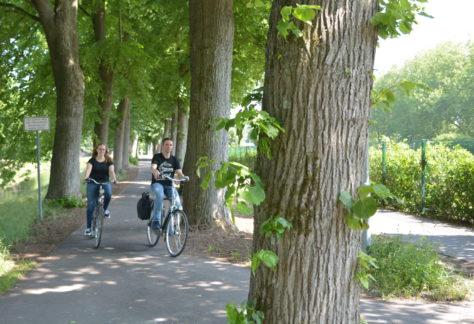 Stadt Nordhorn hat Maßnahmen zur Verbesserung des Radverkehrs umgesetzt