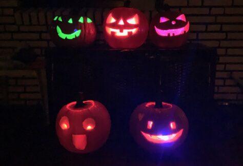 EVW-Kids: Lieber Sankt Martin oder Halloween?