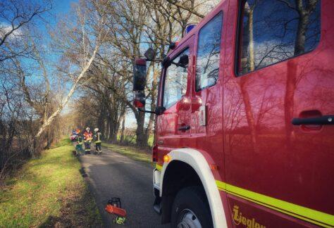 Feuerwehr Nordhorn rückt zu vier sturmbedingten Einsätzen aus